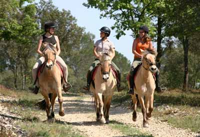 Balade à cheval pour ces 3 passionnées d'équitation