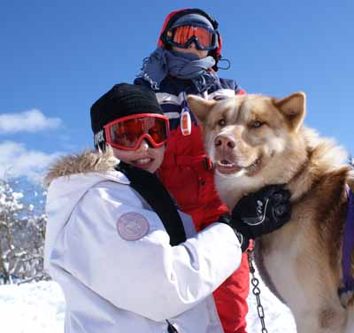 Sortie hivernale en chien de traineau
