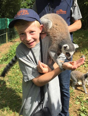 Un garçon de 11 ans réalise une expérience animale incroyable en colonie de vacances